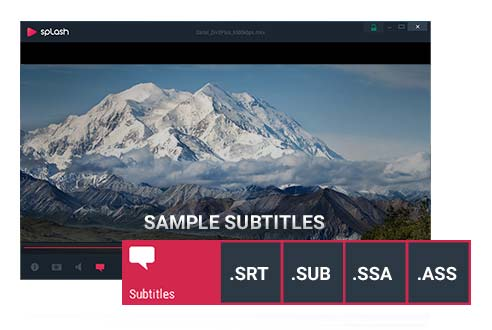 Support for all major subtitles formats and easy navigation